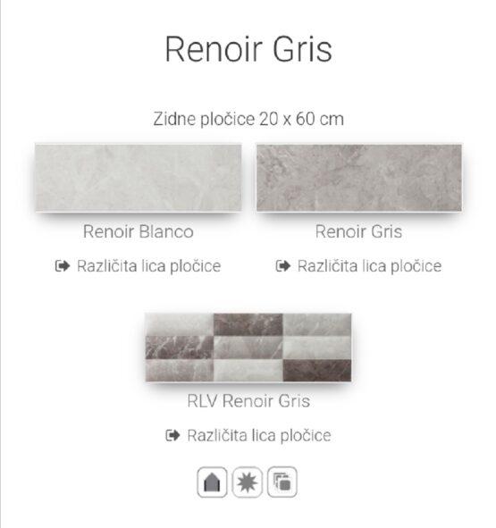 RENOIR GRIS