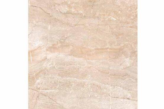 Escudo Marfil
